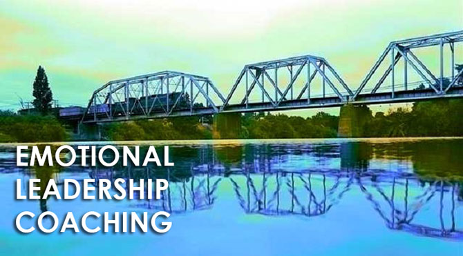 emotional leadership coaching